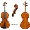 Violin Enrico Rocca