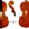 Violin Stefano Renzi 2009