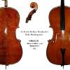 Cello Stefano Renzi 2011 - Mod. Guadagnini SR047Z